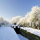 The Frozen Dallow Lane Lock by Rod Johnson