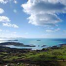 West of Ireland - Ring of Kerry by Tomasz-Olejnik