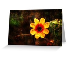 Beauty of Nature Shines Greeting Card