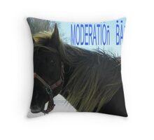 Moderation Banner (marker) Throw Pillow