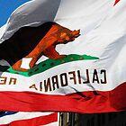 California Republic by Christy Hoffman