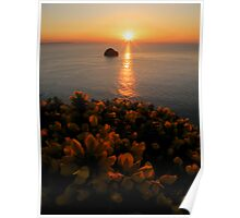 Cornwall: Gorse in the Sunset Poster