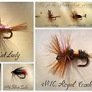 Flies for the Brown Trout by The Creative Minds