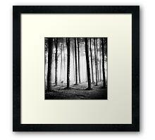 Black & Light - Dartmoor Devon Framed Print