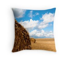 Hay Field Throw Pillow