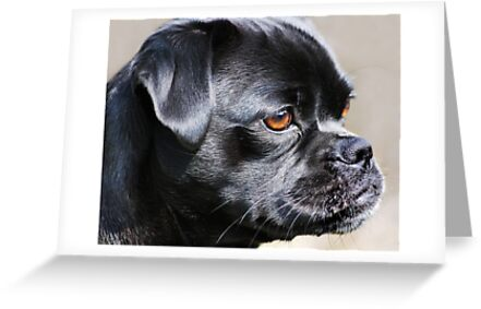 """Pug Mug ~ In Profile"" by Laurie Minor"