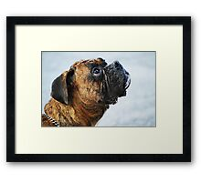 """Whatever you say, boss..."" Framed Print"