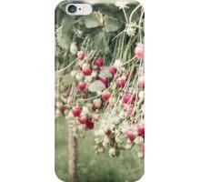 Strawberries iPhone Case/Skin