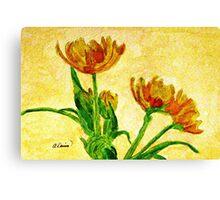 Monte Carlo Double Tulip Canvas Print