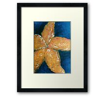 Star fish Framed Print