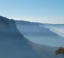 Foggy Wattle Glen Lookout by wallacelam