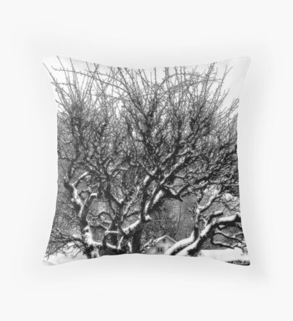 An Old Character Throw Pillow