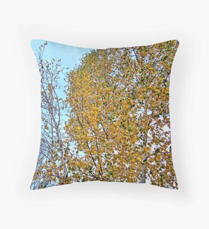 Birch Bounty Throw Pillow