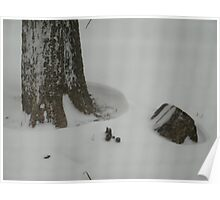 Snowed in Poster