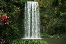 Millaa Millaa falls by EblePhilippe