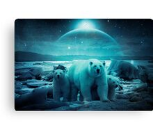 The Queen of the North Pole Canvas Print
