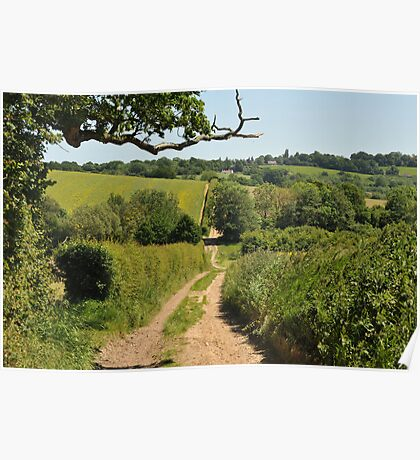 Country road of East Sussex Poster