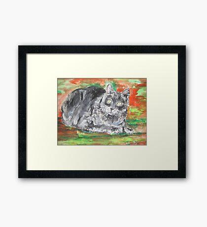 Smalls (My Cat) Framed Print
