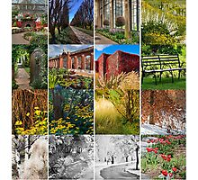 All Glorious Gardens Group Launch! Photographic Print