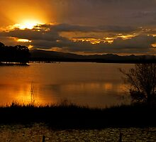 Sunset At Lake Samsonvale. Brisbane, Queensland, Australia. by Ralph de Zilva