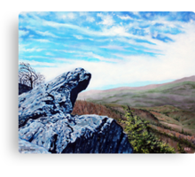 'The Blowing Rock' Canvas Print