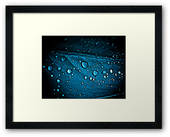 Blue Diamonds...: Sold, Explore Featured work:  10 Featured Works by Kornrawiee