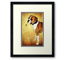 Sorry I broke it, I just wanted to play Totem Tennis with you... Framed Print