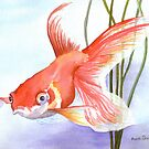 Goldfish by Anne Sainz