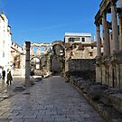 Diocletian's Palace by Lee d'Entremont