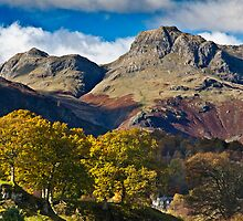 The Langdale valley by Shaun Whiteman