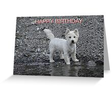 WESTIE BIRTHDAY Greeting Card