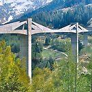 Ganter Bridge by David Davies