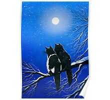Under The Night Sky Poster