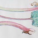 Rhubarb Study by Geraldine M Leahy