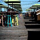 Colorful Key West Pier by Janis Lee Colon