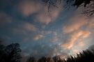 Heavens above by David Isaacson