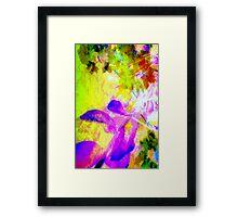 Peachy dawn light on crape-myrtle Framed Print