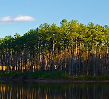 Sunset Lake West Cary by DBGuinn