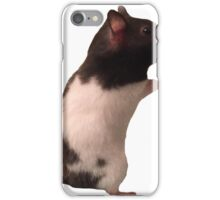 Cute little hamster friend iPhone Case/Skin