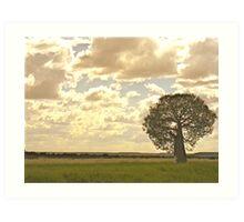 Tambo Boab Tree Art Print
