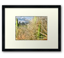 Alien Beauty Framed Print