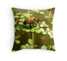 close up of a thirsty bee Throw Pillow