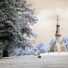 Solder's Monument in Infrared by ©  Paul W. Faust