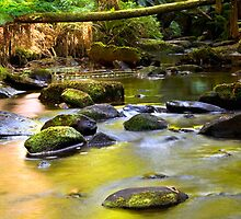 Gentle Flow by Paul Oliver