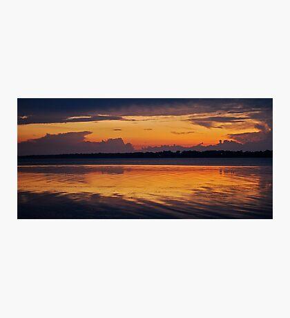 Morning Glory. 12-3-11 Photographic Print