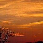 Summer Sunset by litmusound