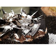 Chocolate Cake Photographic Print