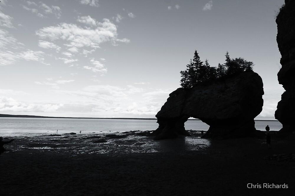 Hopewell Rocks by Chris Richards