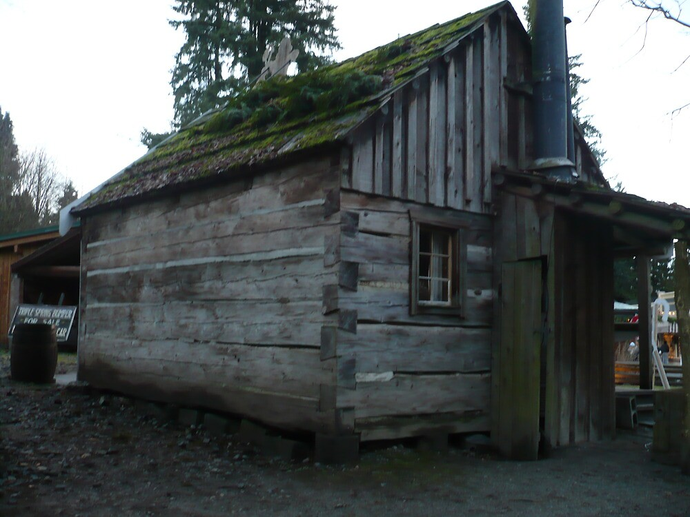 LOG CABIN 1927 by DIANEPEAREN