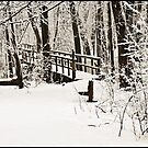 The Foot Bridge by jules572